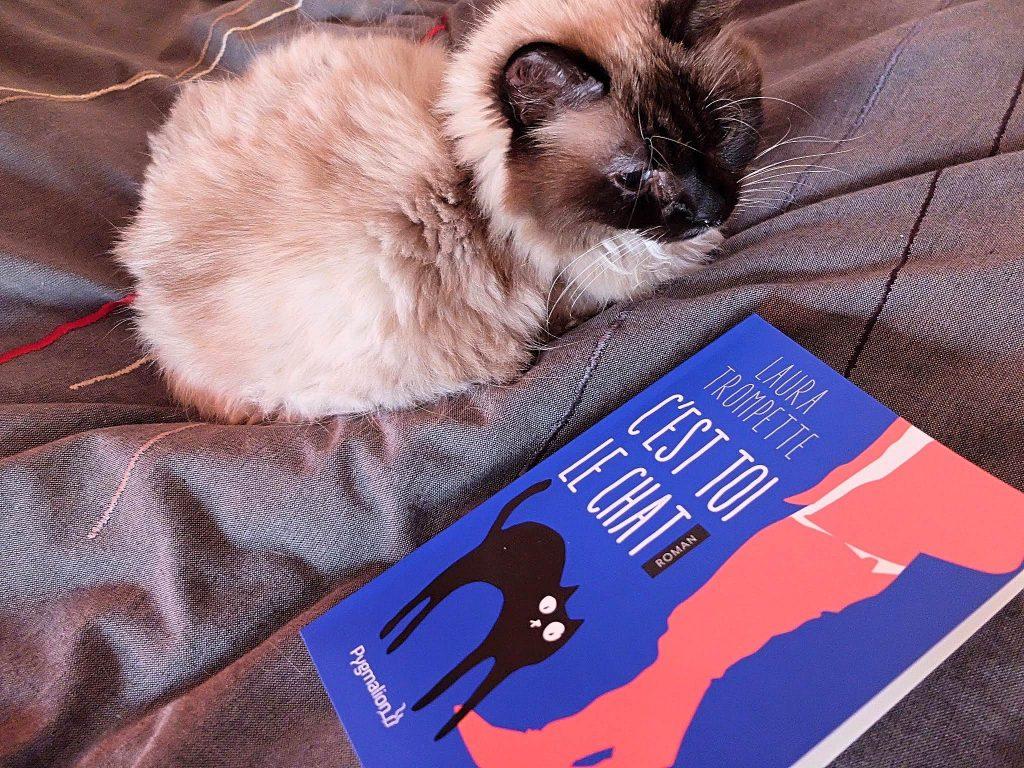 C'est toi le chat ! de Laura Trompette